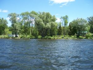 Elm Point, Rice Lake - Very Private Cottage