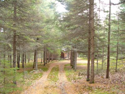 Algonquin Back Country Cabin for rent