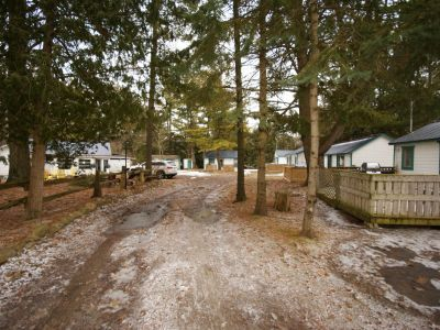 Cottage in Pinewood #4